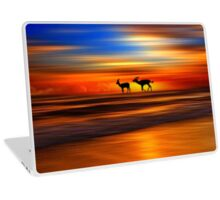 Sunset 4 Laptop Skin