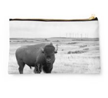 Power of the Prairie Studio Pouch