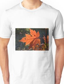 Fall Maple Unisex T-Shirt