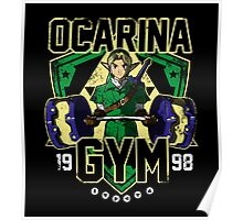Ocarina Gym Poster