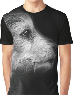 dog, terrier, black and white Graphic T-Shirt