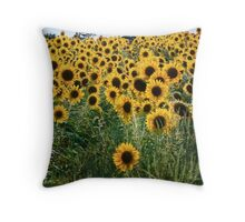Pick me! Pick me! – Prints, Cards and iPhone Throw Pillow