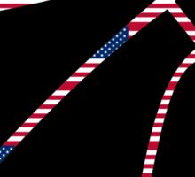 Basketball World Cup 2014 USA champions Sticker
