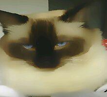 Blue-eyed  by OlaG