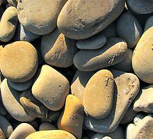 Gaviota Beach Treasures by SuSparrow