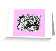 Pink Baby Cats  Greeting Card