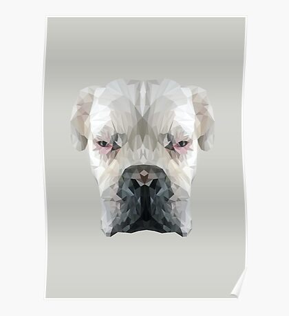 Boxer dog low poly. Poster
