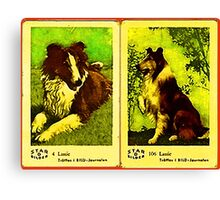 Lassie Moviestar Dog Canvas Print