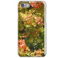 Green Red Yellow Orange iPhone Case/Skin