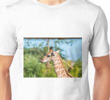 Rothschild Giraffe sticking out tongue Unisex T-Shirt