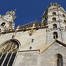 St. Stephen's Cathedral by Paula Bielnicka