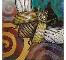 The Gold Bug Photographic Print