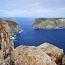 Cape Pillar and Tasman Island by Harry Oldmeadow