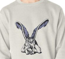 Realization of Freedom Pullover
