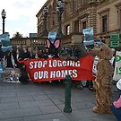Stop Logging Our Homes by Peter Krause