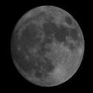 Super Moon - Novembribus, XIII, MMXVI by Matsumoto