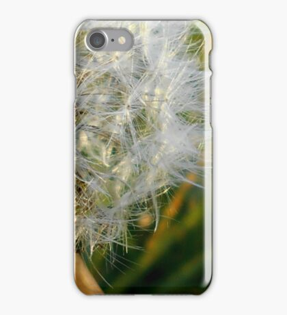 November's Taraxacum Love. iPhone Case/Skin