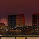 Moon Rise by LudaNayvelt