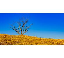 The Dry Country Photographic Print