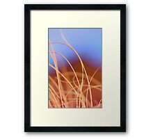 Macro Grass in Tan Rust and Blue Framed Print