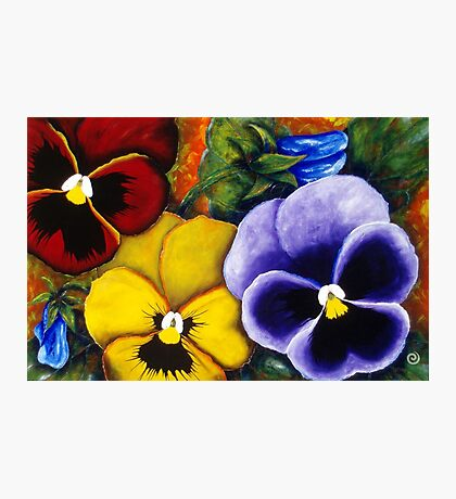 5 Pansies Photographic Print