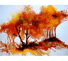 The Trees-Autumn Photographic Print