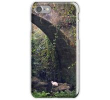 The cat under the bridge iPhone Case/Skin