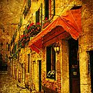 A Street in Venice by Marilyn Harris