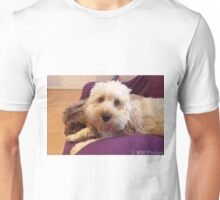 Cockapoo posing for camera Unisex T-Shirt