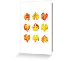 Grape leafs Greeting Card