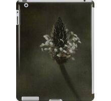 Ragged beauty iPad Case/Skin