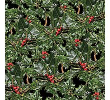 Holly berries Christmas pattern Photographic Print