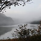 """"""" Early Mist Of Fal """" by Richard Couchman"""