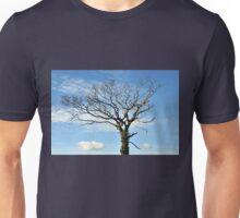 Autumn Skies Unisex T-Shirt