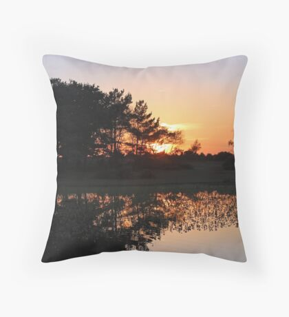 The last glimmer of sun Throw Pillow