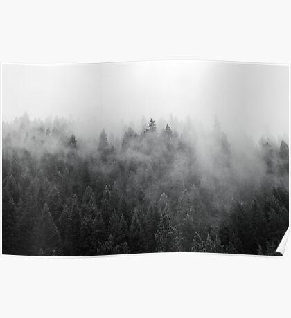 Black and White Mist Poster