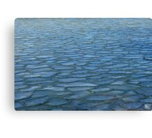River Puzzle Canvas Print