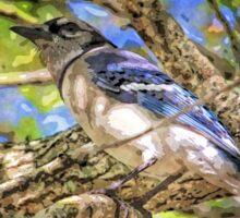Spring Blue Jay  Sticker