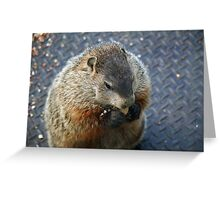 This is what I've been missing - got me a peanut! Greeting Card