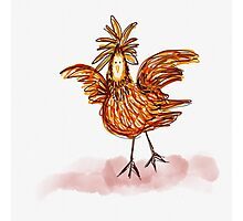 Little Chook Photographic Print