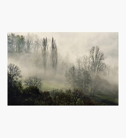 A misty autumn morning Photographic Print