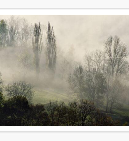 A misty autumn morning Sticker