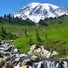 Mount Rainier and Stream by Laurie Miller