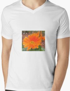 Orange Blossoms  Mens V-Neck T-Shirt