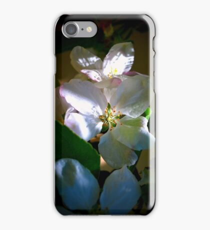 Sunlit Blossoms iPhone Case/Skin