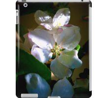 Sunlit Blossoms iPad Case/Skin
