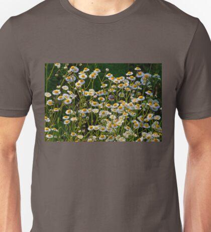 Daisy Fleabane  Unisex T-Shirt