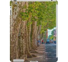 Street scene, Brignoles, Provence iPad Case/Skin
