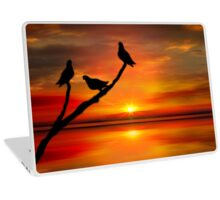 Birds at Sunset point-2 Laptop Skin