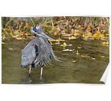 Windy day at the pond! Poster